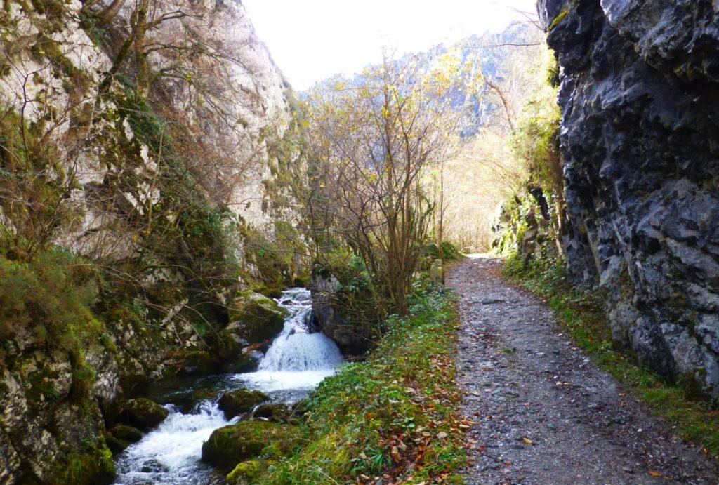 Caleao y Parque Natural de Redes