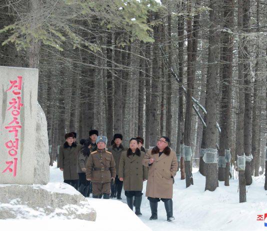 Corea del Norte Virus