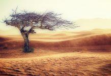 Países afectados por el cambio climático
