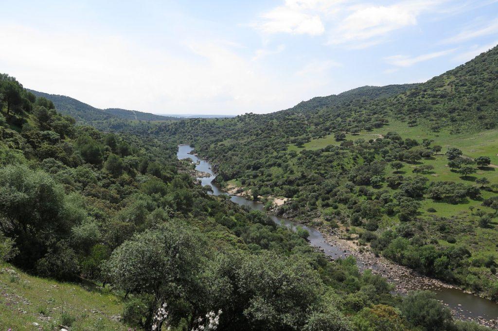 Campiña Norte de Jaén