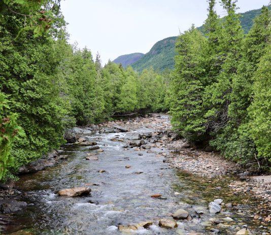 Parque Nacional Gaspésie
