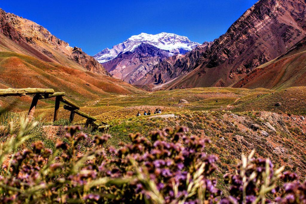 Mendoza, viñedos a la sombra de los Andes - Descubrir