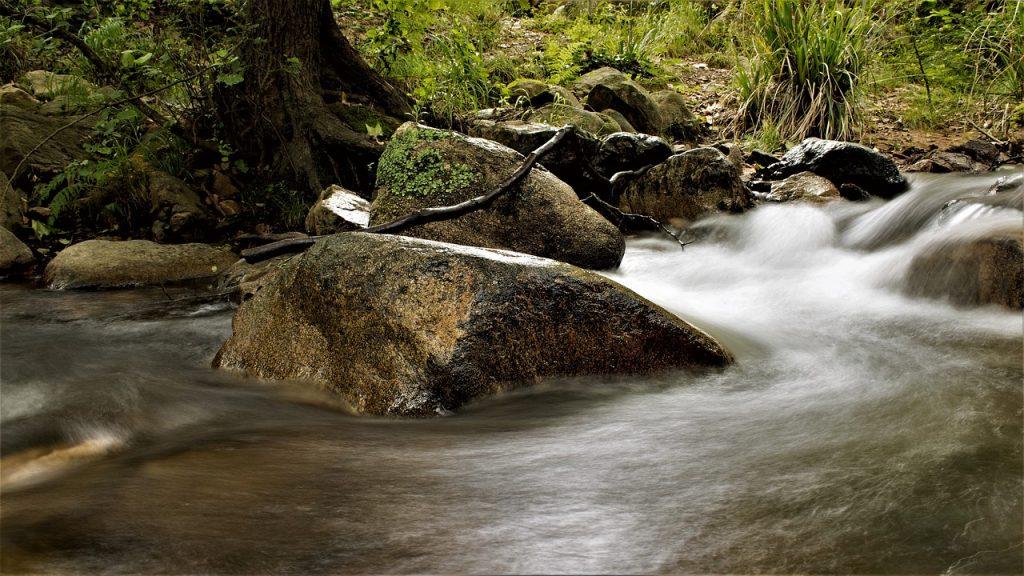 Parque Montseny
