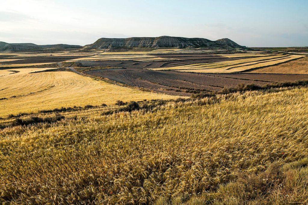 Ruta del Desierto de Monegros y las Cartujas