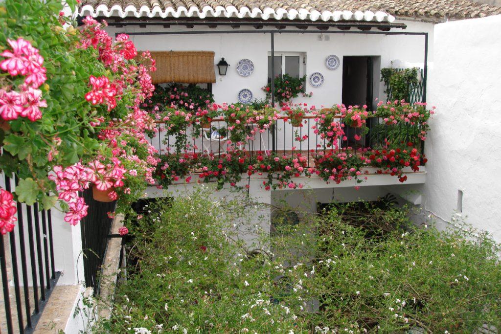 Descubriendo El Puerto de Santa María, la alegría de Cádiz - Descubrir