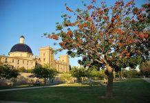 Los parques más bonitos de Valencia