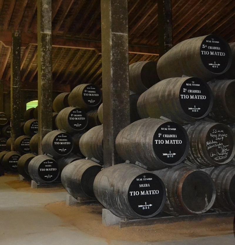 Descubriendo la Ruta del Vino y el Brandy de Jerez - Descubrir