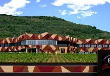 Bodega Hotel FyA