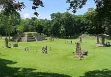Descubriendo la cultura maya
